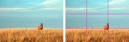 lograr_mejor_foto_monitores_benq.jpg