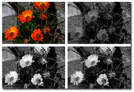ajustes-blanco-negro-monitores-benq.png
