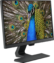 monitor profissional benq